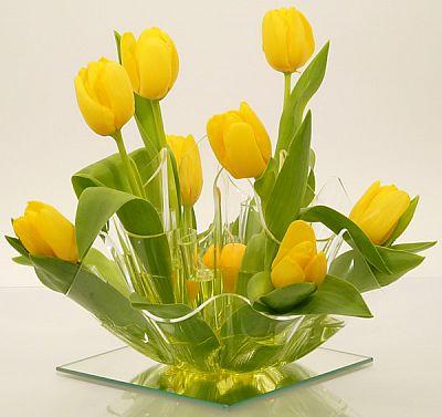 váza tulipan