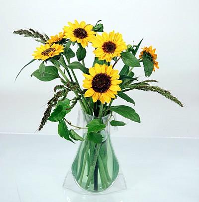 váza tvarovací